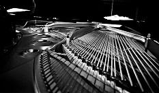 """Piano Strings"" by CarlosRuiz"